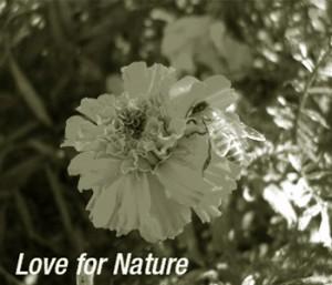 Sudhanshu Ji Maharaj - Love for Nature