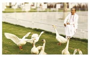Sudhanshu Ji Maharaj | Vishwa Jagriti Mission | Love for Nature - Fauna