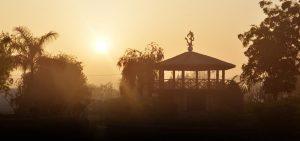 Sudhanshu Ji Maharaj | Vishwa Jagriti Mission | Nature | Anandham Ashram