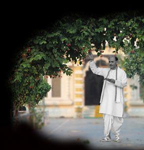 Sudhanshu Ji Maharaj   Vishwa Jagriti Mission   Flora   Fauna